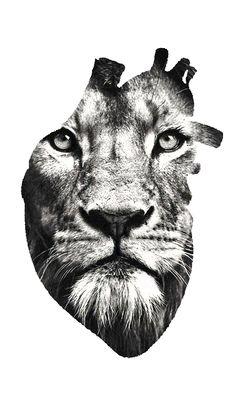 Half Sleeve Rose Tattoo, Half Sleeve Tattoos Drawings, Forearm Band Tattoos, Leg Tattoo Men, Lioness Tattoo, Tiger Tattoo, Tattoo Salon, Tattoo Studio, Design Tatuaje