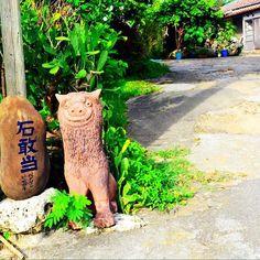【maiko910】さんのInstagramをピンしています。 《𓇼𓇼𓇼 ここペンションなんだって💚💙 * * 早くお出掛けしたいなぁ💕 楽しかったこの日💋 * 沖縄また明日から28℃だってー☀️ 天気と気温がやたら好きw #沖縄 #北部 #本部 #女子旅 #サイクリング #カメラ女子 #一眼レフ #沖縄life #沖縄移住 #なんくるlife #シーサー #石敢當 #海 #備瀬 #フクギ並木 #パワースポット #ワルミ #okinawa #cycling #camera #nikon #walking #happy #love #summer》