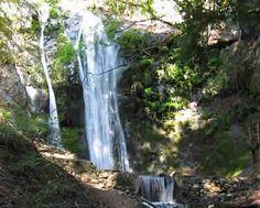 Pfeiffer Falls a natural, beautiful Big Sur California Waterfall on Redwood Creek in Pfeiffer Big Sur State Park