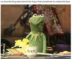 """One of my favorite thing about Kermit the Frog is that sometimes he makes this face."""