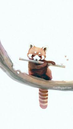 Raccoon painting cute!!!