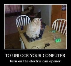 Cyber protection by........Evil!!!