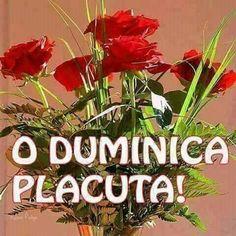 Happy Birthday, Sunday, Pictures, Hapy Day, Happy Brithday, Domingo, Urari La Multi Ani, Happy Birthday Funny, Happy Birth