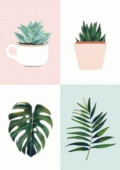 9 Ide Lukisan Kaktus Lukisan Kaktus Menggambar Kaktus Kaktus