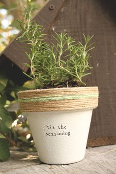 Tis the Seasoning by PlantPuns on Etsy