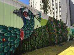 Binho Ribeiro in Sao Paulo, Brazil.