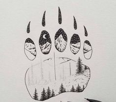 Bear by Sam Larson