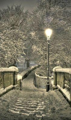 Snowy Night ~ Chester, England