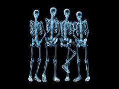 """Como parte das atividades da Semana Nacional de Ciência e Tecnologia, o Museu de Ciências Morfológicas da UFMG apresenta a exposição: A Voz do Corpo. Os esqueletos do acervo estarão expostos SOMENTE até esta sexta-feira, 25 de outubro, de 8 às 17 horas, na Praça do Museu (próximo ao Instituto de Ciências Biológicas – ICB,...<br /><a class=""""more-link"""" href=""""https://catracalivre.com.br/bh/agenda/gratis/exposicao-na-ufmg-a-voz-do-corpo/"""">Continue lendo »</a>"""