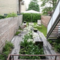 Very Narrow Modern Garden - good for side of the house as well.