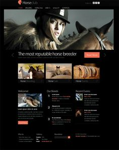 Free Website Template for the Horse Club.. http://www.serverpoint.com/