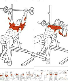 A Beginners Gym Workout For Women Fitness Gym, Muscle Fitness, Physical Fitness, Mens Fitness, Fitness Tips, Chest Workouts, Fit Board Workouts, Gym Workouts, At Home Workouts