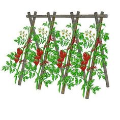 Secrets to Growing Tomatoes in Containers - Urban Gardening Potager Garden, Balcony Garden, Garden Planters, Potager Bio, Vertical Vegetable Gardens, Vegetable Garden Design, Vegetable Gardening, Growing Tomatoes In Containers, Raised Beds