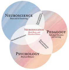 """Why Mind, Brain, and Education Science is the """"New"""" Brain-Based Education"""