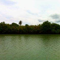 Loboc River in Bohol