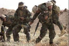 military.bmp 484×322 pixels
