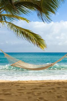 Hammock over a Caribbean Beach - Curtain Bluff my ultimate bliss Hammock Beach, Beach Pink, Ocean Beach, Summer Beach, Summer Time, Dream Vacations, Vacation Spots, Beach Vacations, Beach Curtains