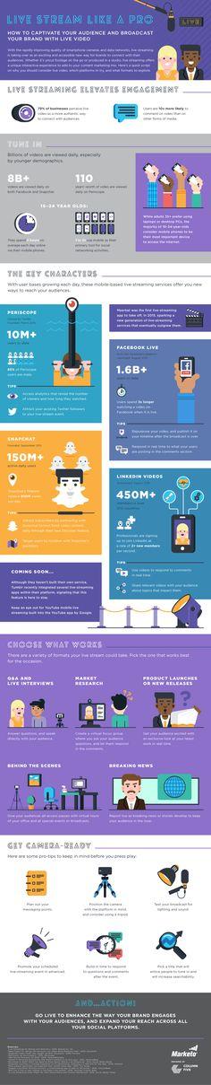 Lie stream like a Pro #infographic