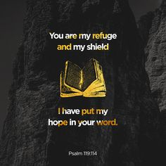 """Thou art my hiding place and my shield: I hope in thy word."" ‭‭Psalms‬ ‭119:114‬ ‭KJV‬‬ http://bible.com/1/psa.119.114.kjv"