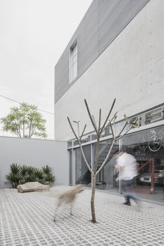 Gallery of Workshop House / PAX.ARQ - 21