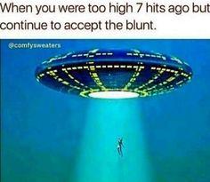 Cannabis, 420 Memes, Medical Marijuana, Dankest Memes, Funny Memes, Hilarious, Weed Jokes, Frases, Ganja