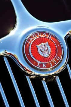 Jaguar Xk 150 Hood Ornament - Car photographs  by Jill Reger