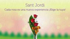 Sant Jordi en FloraQueen
