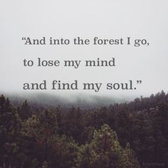 And into the forest i go, to lose my mind and find my soul -John Muir Trekking Quotes, Hiking Quotes, Travel Quotes, Quotes About Hiking, Hiking Meme, The Words, John Muir, Tattoo Fe, Soul Tattoo