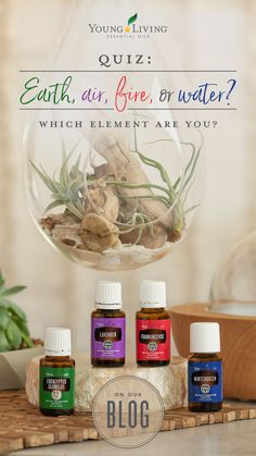 Dig deeper into your personality and discover your element! Plus, find an essential oil diffuser blend at the end to match! Essential Oil Diffuser Blends, Natural Essential Oils, Young Living Oils, Young Living Essential Oils, Diffuser Recipes, Natural Health, Air Fire, Earth Wind, Yl Oils
