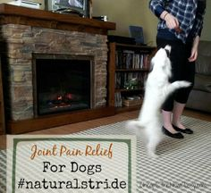 Natural Solutions For Active Dogs With Joint Pain #sponsored - http://cheapisthenewclassy.com/2014/01/natural-stride-active-dogs.html