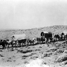 Utah Pioneers