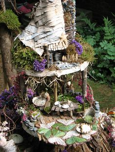 Fairy Garden Beauty.