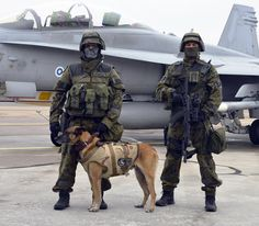 Finnish Air Force Military Police dog unit [877x768]
