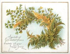 bouquet of ferns and foliage, stems to bottom right corner