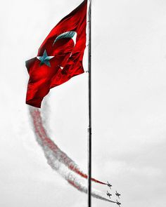 Home Trends 2020 Turkish Military, Turkish Army, Sunflower Iphone Wallpaper, Revolution Poster, Turkey Flag, Istanbul, Turkish Soldiers, Star Wars, Islamic Pictures