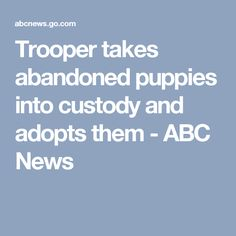 Trooper takes abandoned puppies into custody and adopts them - ABC News