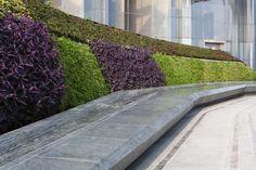 Galeria de Arquitetura e Paisagem: padrões naturais e culturais projetados na Praça Sowwah por Martha Schwartz - 11