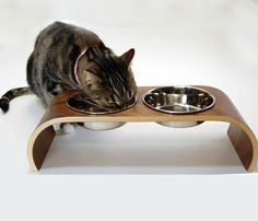 {sleek Walnut pet feeder} for the stylish kitty/puppy! by Vurv