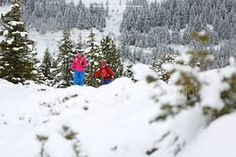Anfänger Skitour in der Zillertalarena mit dem Bergführer von Alpindis.at www.alpindis.at Snow, Outdoor, Outdoors, Outdoor Games, Human Eye