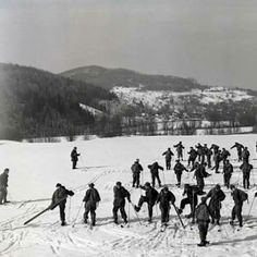 Mountain and Cold Weather Company