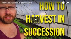 How To: Harvest in Succession