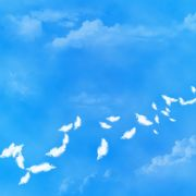 Zen Cart to VirtueMart Migration: Go Through It with Ease [Prezi]