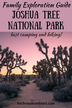 Have you explored Joshua Tree National Park with kids Its one of the most familyfriendly national parks and is perfect for outdoorloving families This post covers what to. Best Places To Camp, Camping Places, Camping And Hiking, Hiking Tips, Backpacking, Winter Camping, Rv Camping, Winter Travel, Camping Ideas