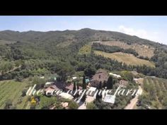 The Mozart Vineyard | Umbria Tuscany attributes music to its fine vines/wines.