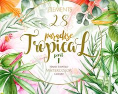 Tropic Clipart, Tropical Watercolor Flowers & Leaves, Hibiscus, Pink, Orange Floral, Bright Green Foliage, Jungle plants, Wedding invitation