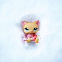 It's all fun and games until it's too cold to go outside. What do you do when it snows? Do you head outside or become a hermit like me? Bonus question: if we make snow angels do cats make snow cats? #lpsphotography #lps #littlestpetshop #winter #snow #lpspics #lpspopular #sophiegtv #youtube Lps Popular, Little Pets, Little Pet Shop, Custom Lps, Lps Toys, Snow Angels, Vegan Life, Diy Dress, Winter Snow