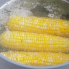Make the perfect boiled corn on the cob. Learn how long to boil corn on the cob and the best ways to serve it. Make the perfect boiled corn on the cob. Learn how long to boil corn on the cob and the best ways to serve it. Boil Corn On Cob, Boil Sweet Corn, Corn Recipes, Side Dish Recipes, Vegetable Recipes, Fresh Corn On The Cob Recipe, Cooking Corn On Cob, Corn On The Con, Sauces
