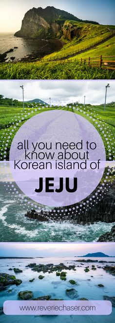 All you need to know about Jeju from a travel blogger! Tea fields in Korea, volcanic crater seongsan ilchulbong, hiking up hallasan, hyeopjae beach and best beeaches on jeju, hexagonal Daepo Jusangjeolli Cliff and unusual museums. #vacation #family #honeymoon #couple #korean