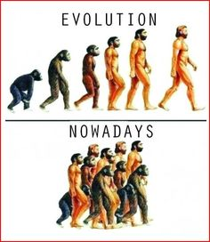 Funny pictures about Evolution These Days. Oh, and cool pics about Evolution These Days. Also, Evolution These Days. Funny Cartoons, Funny Comics, Funny Jokes, Hilarious, American Funny Videos, Funny Cat Videos, Funny Animal Pictures, Funny Photos, Justin Bieber Jokes