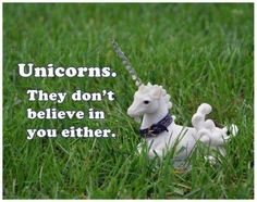 Do you really exist if a unicorn doesn't believe in you?